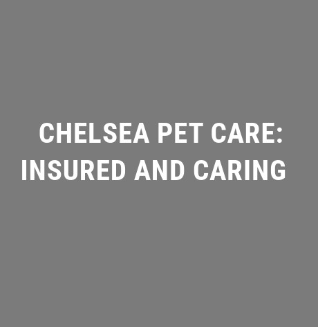 CHELSEA PET CARE: INSURED AND CARING